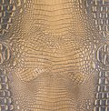 Gold/Dark Brown Embossed Gator Belly Leather Texture Royalty Free Stock Photo
