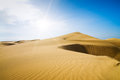 Gold desert into the sunny day. Royalty Free Stock Photo
