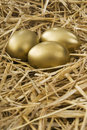 Gold egg in clutch Stock Images