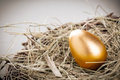 Gold egg in nest from hay close up Stock Photo