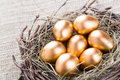 Gold eggs egg in nest from hay close up Royalty Free Stock Images