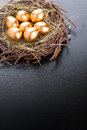 Gold eggs in nest with copyspace Stock Photos