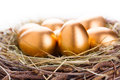 Gold eggs in nest from hay close up Royalty Free Stock Photos