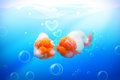 Gold fish in love two under water kiss heart bubble Stock Photos