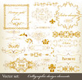 Gold-framed luxury calligraphic design elements Stock Photography