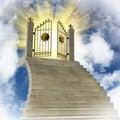 Gold gates Royalty Free Stock Photo