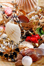 Gold Jewelry with seashells Royalty Free Stock Images