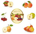 Gold label with different sorts of fruit. Royalty Free Stock Photo