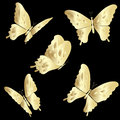 Gold Lace butterfly on black background Royalty Free Stock Photo