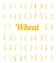 Gold laurel wreath - a symbol of the winner.