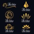 Gold lotus flower logo vector set design