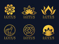 Gold lotus logo sign vector set design Royalty Free Stock Photo