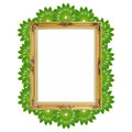 Gold luxury louise and green leaves around of photo frame isolated background copy space Royalty Free Stock Images