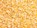 Gold micronized corn background. food for horse Royalty Free Stock Photo