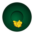 Gold mining bowl