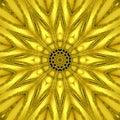 Gold Mythical Kaleidoscope, Go...