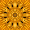 Gold Mythical Kaleidoscope In ...