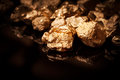 Gold nuggets on black background isolated Stock Images
