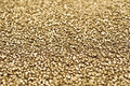 Gold nuggets closeup abstract background Royalty Free Stock Photos