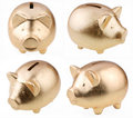 Gold pig as a money-box Royalty Free Stock Photo