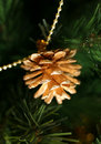 Gold pine cones Stock Photography