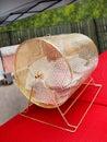 Gold Raffle Drum Royalty Free Stock Photo