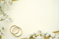 Gold rings with empty card and flowers Royalty Free Stock Images