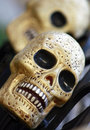 Gold skulls Royalty Free Stock Photo