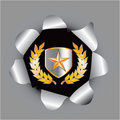 Gold star on shield with leaves in hole Stock Photos