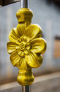 Gold steel  flower on the door Royalty Free Stock Photo