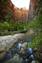 Gold Sunset Light on a Towering Rock and Stream in Zion National Park Royalty Free Stock Photo
