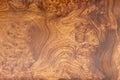 Gold teak wood texture nice Stock Photos
