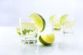 Gold tequila with lime. Royalty Free Stock Image