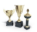 Gold trophys cup 3d illustration on white Royalty Free Stock Photo