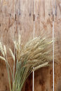 Gold wheat ears Royalty Free Stock Images