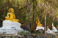 Gold and white buddha Stock Images
