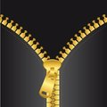Gold zip vector Royalty Free Stock Photo