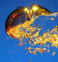 Golden air bubbles in water Royalty Free Stock Photo