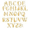 Golden Alphabet With Gold Frol...