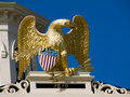 Golden American Eagle Emblem Stock Image
