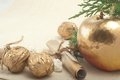 Golden apple and nuts with wishes for christmas Royalty Free Stock Photo