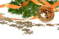 Golden ball with orange ribbon and firtree garland Stock Images