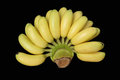 Golden banana bunch isolated Royalty Free Stock Photo