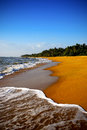 Golden beach india sri lanca Stock Image