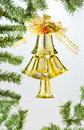 Golden bells and pine Stock Images