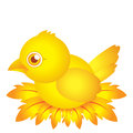 Golden bird baby cartoon character with feather this is Stock Images