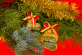 Golden boots and branch of Christmas tree Royalty Free Stock Photo