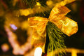 Golden bow on a background of green Christmas tree branches Royalty Free Stock Photo
