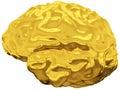Golden brain Stock Image