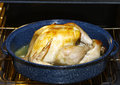 Golden Brown Turkey Royalty Free Stock Photography